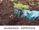 a man agrarian assesses the...   Shutterstock . vector #639501316