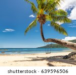 palm tree on tropical beach in... | Shutterstock . vector #639596506