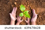 agriculture and planting in... | Shutterstock . vector #639678628