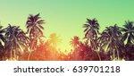tropical beach summer... | Shutterstock . vector #639701218
