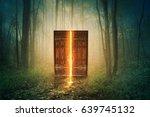 Glowing Door In The Middle Of...