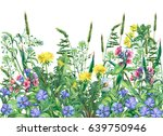 Stock photo panoramic view of wild meadow flowers and grass isolated on white background horizontal border 639750946