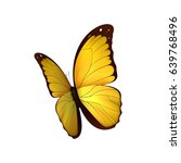 butterfly yellow isolated on... | Shutterstock .eps vector #639768496
