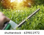 home and garden concept. hedge... | Shutterstock . vector #639811972