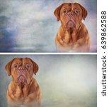 Drawing  Dog Portrait Oil...