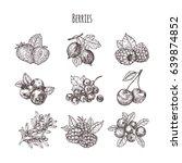 hand drawn illustration berries ... | Shutterstock .eps vector #639874852