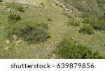 landscape | Shutterstock . vector #639879856