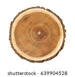 Big Tree Trunk Slice Cut From...