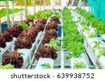 small rooftop hydroponic... | Shutterstock . vector #639938752