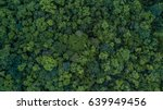 Aerial View Of The Forest ...
