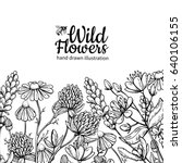 Wild Flowers Vector Drawing Se...