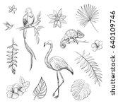 vector set of hand drawn... | Shutterstock .eps vector #640109746