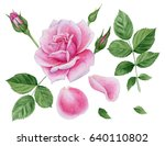 Stock photo set of design elements watercolor rose flower leaves buds petals for wedding greeting flower 640110802