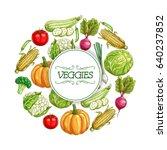 vegetable sketch poster. fresh... | Shutterstock .eps vector #640237852