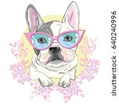 bulldog vector  illustration | Shutterstock .eps vector #640240996