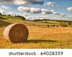 Perfect Harvest Landscape With...