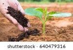 farmer hand giving plant... | Shutterstock . vector #640479316