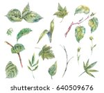 set of vintage watercolor green ... | Shutterstock . vector #640509676