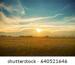 farm land after harvest on...   Shutterstock . vector #640521646