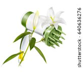 hair dryer with lilies in... | Shutterstock . vector #640636276