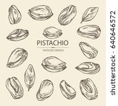 collection of pistachio. hand... | Shutterstock .eps vector #640646572