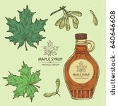 collection of a bottle of maple ... | Shutterstock .eps vector #640646608