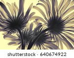 transparent flowers in the back ... | Shutterstock . vector #640674922