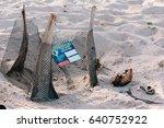 Nest Of Hawksbill Sea Turtle I...