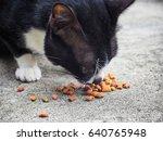 cat eating food | Shutterstock . vector #640765948