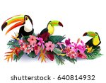 colorful tropical toucans in... | Shutterstock .eps vector #640814932