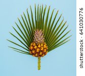 pineapple and palm leaf.... | Shutterstock . vector #641030776