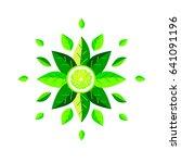 mandala of fresh leaves with... | Shutterstock .eps vector #641091196