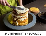 woman decorating a delicious... | Shutterstock . vector #641093272