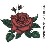 red rose   vector art | Shutterstock .eps vector #641183332