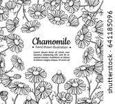 chamomile vector drawing frame. ... | Shutterstock .eps vector #641185096