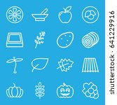 organic icons set. set of 16... | Shutterstock .eps vector #641229916