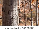 A Tree In An Autumn Woods With...