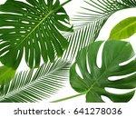 green tropical leaves on white... | Shutterstock . vector #641278036