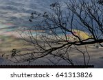 iridescent cloud | Shutterstock . vector #641313826