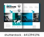 business template illustration. ...   Shutterstock . vector #641394196