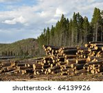 logging pine trees in this... | Shutterstock . vector #64139926