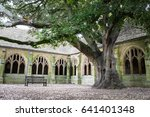 oxford  uk   may 2017  the tree ...   Shutterstock . vector #641401348