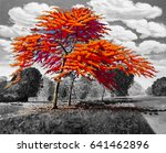 oil painting landscape red... | Shutterstock . vector #641462896