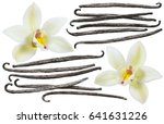Stock photo vanilla flower and bean element set isolated on white background for package design 641631226