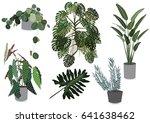 indoor plants set vector. leaf... | Shutterstock .eps vector #641638462