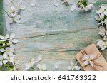beautiful vintage background... | Shutterstock . vector #641763322