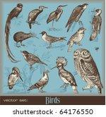 vector set  birds   variety of... | Shutterstock .eps vector #64176550