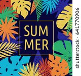 summer  tropical paradise ... | Shutterstock .eps vector #641770906
