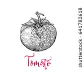 tomato vector drawing. isolated ... | Shutterstock .eps vector #641782618