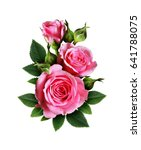 Stock photo pink rose flowers bouquet isolated on white 641788075